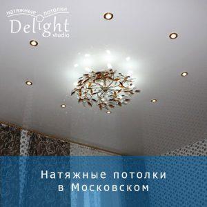 Высококачественные натяжные полотна любой фактуры и цвета в Московском